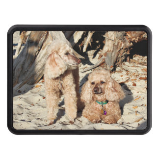 Leach - Poodles - Romeo Remy Trailer Hitch Cover