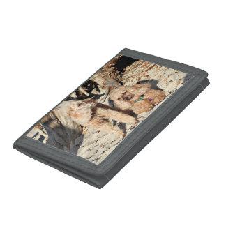 Leach - Poodles - Romeo Remy Tri-fold Wallets