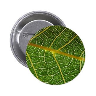 Leaf 2 Inch Round Button