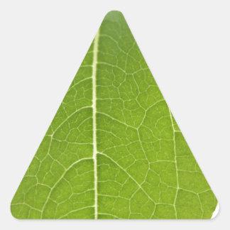 Leaf Closeup Sticker