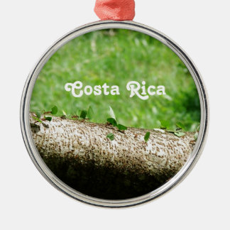 Leaf Cutter Ants in Costa Rica Metal Ornament
