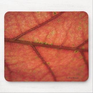 Leaf Detail Mouse Pad