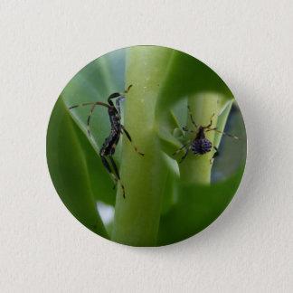 Leaf Footed Bug ~ button