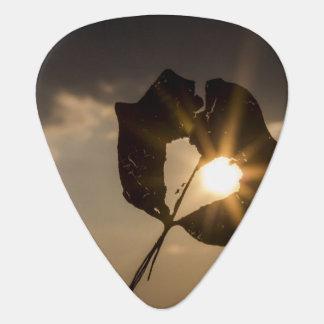 Leaf Heart Guitar Pick