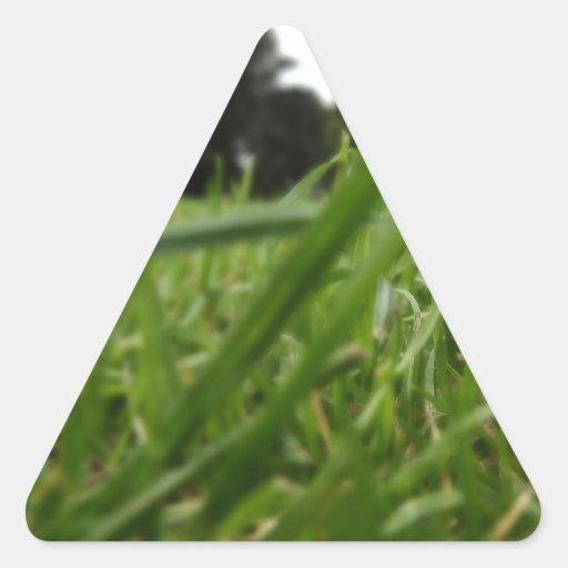 Leaf in grass triangle stickers