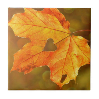 Leaf in Heart Ceramic Tiles