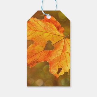 Leaf in Heart Gift Tags