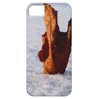 Leaf it Til Spring Case For The iPhone 5