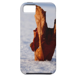 Leaf it Til Spring iPhone 5 Case