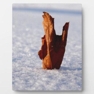 Leaf it Til Spring Plaque
