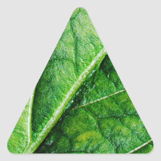 Leaf Macro Triangle Sticker