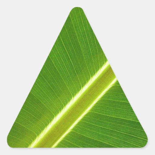 Leaf of banana tree triangle stickers