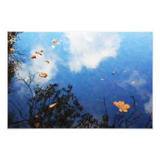 Leaf on Water Photographic Print