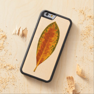 Leaf Photo Cute Unique Maple iPhone 6 Bumper Case