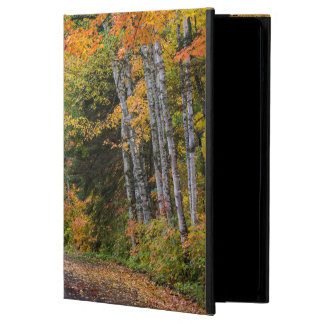 Leaf Strewn Gravel Road With Autumn Color iPad Air Case