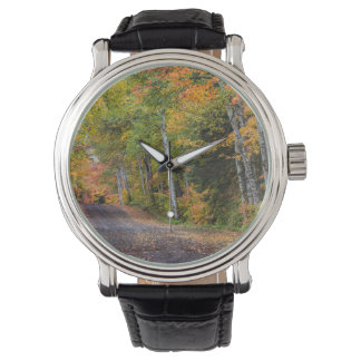 Leaf Strewn Gravel Road With Autumn Color Wristwatch