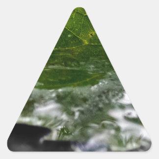 Leaf Water Close Up Triangle Sticker