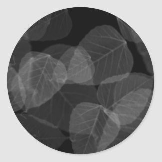Leaf X-Ray Round Sticker