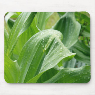 LeafDrops Mouse Pad