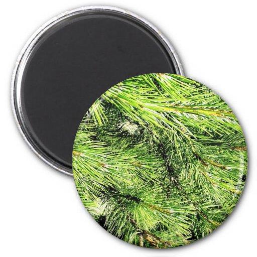 Leafs natural natural  Green Trees Earth Beautiful Fridge Magnet