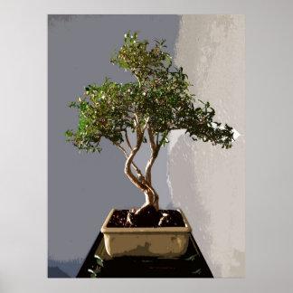 Leafy Japanese Bonsai Tree Poster