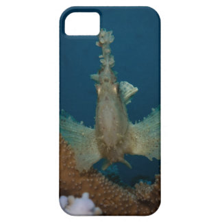Leafy Scopionfish Great Barrier Reef iPhone 5 Cases