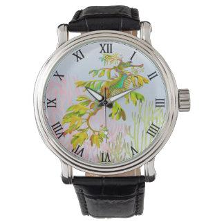 Leafy Sea Dragon Seahorse Watch