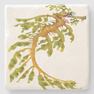 Leafy Seadragon Stone Coaster