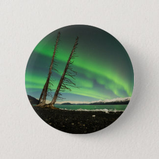 Leaning Tree Aurora 2 Inch Round Button