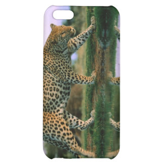 Leapard Reflection iPhone 5C Cases