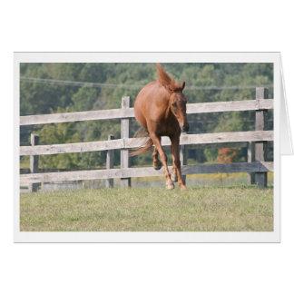 Leapin' Mimi Card