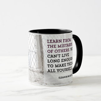Learn From Mistakes of Others Mug
