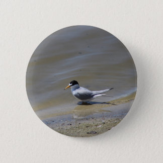 Least Tern Button