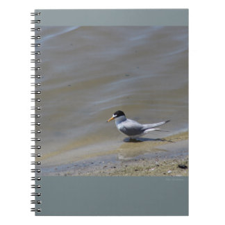 Least Tern Spiral Notebook