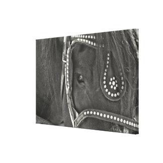 LEATHER BLACK 24 x 16 Canvas Print