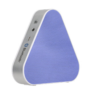 leather structure,blue bluetooth speaker