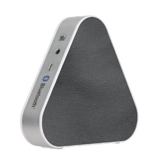 leather structure,silver speaker