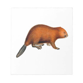 Leave it to Beaver Notepad