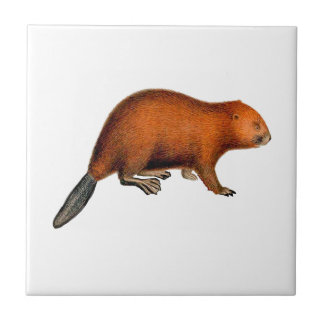 Leave it to Beaver Tile