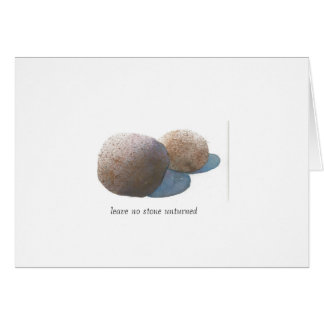Leave no stone unturned card