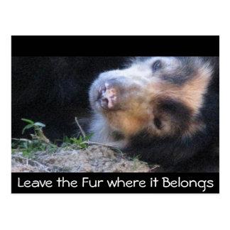 Leave the Fur where it Belongs Postcard