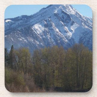 Leavenworth Coasters