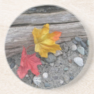 Leaves Adrift Coaster