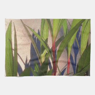 Leaves and Shadows Kitchen Towel