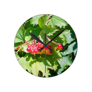 Leaves and unripe berries guelder viburnum opulus wall clock
