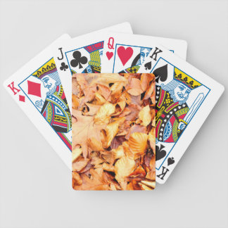 Leaves background bicycle playing cards