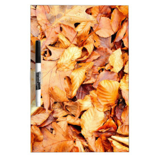 Leaves background dry erase board