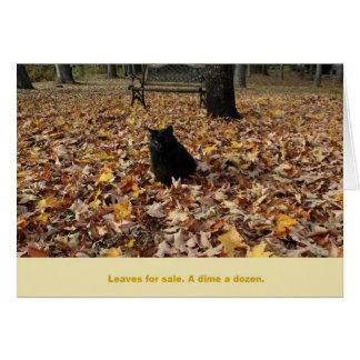 Leaves for Sale by Guiness the Cat Card