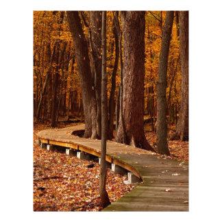 Leaves In Fall Letterhead