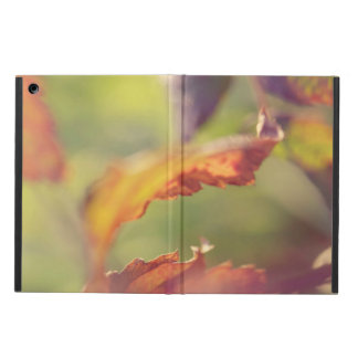 Leaves in the wind iPad air cases